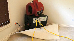 Carpet Drying from Water Damage