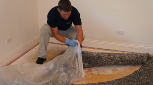 Removing Dmaged Carpet Padding from Water Damage